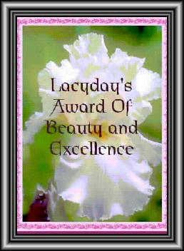 LacyDays Award of Beauty and Excellence